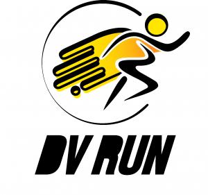 dv run